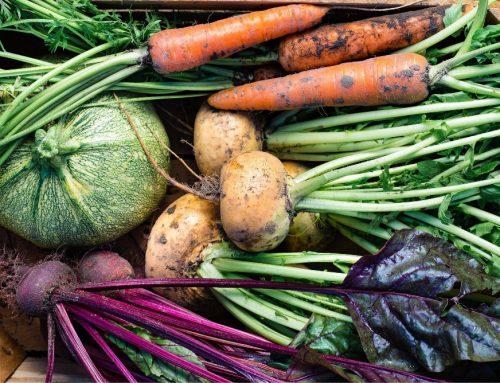 Les remèdes de la naturopathie pour soutenir le système digestif